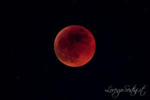 Eclissi di Luna 2011 Canon 50d Telescopio 80ed.