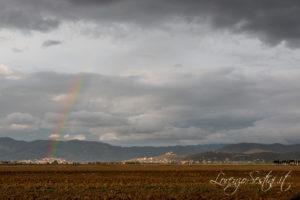 Paesaggio Arcobaleno Val di Chiana