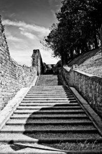 Scale Arezzo
