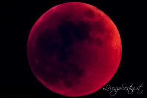 Eclissi 2008 con Telescopio Canon 40d