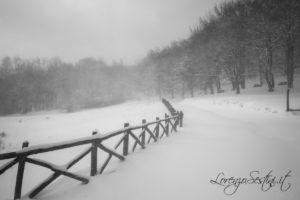 Neve Catenaia
