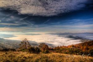 Paesaggio Nebbia Val di Chiana