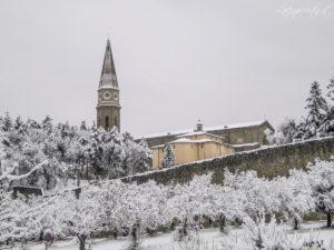 Neve Arezzo