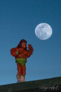 Luna e Ultimate Warrior