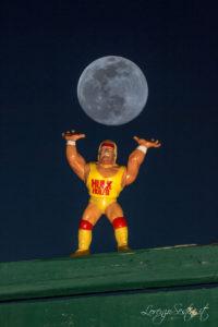 Luna e Hulk Hogan